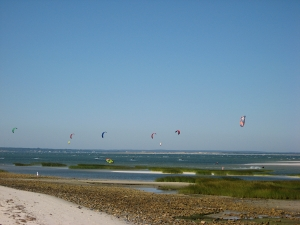 A rainbow of kitesurfers on the Cape