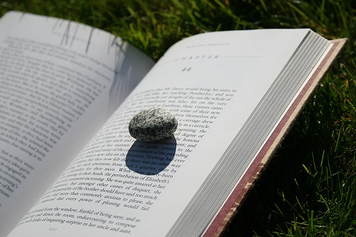 book-with-rock