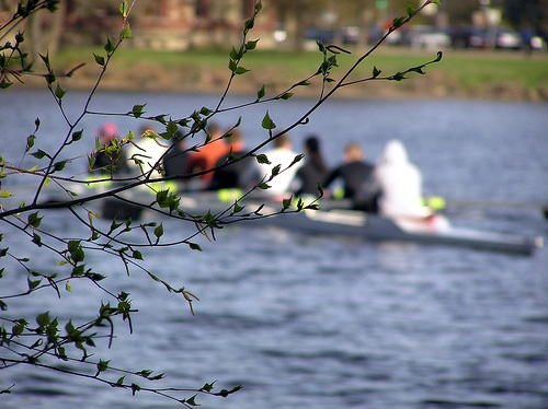 Rowing and blooming: signs of spring