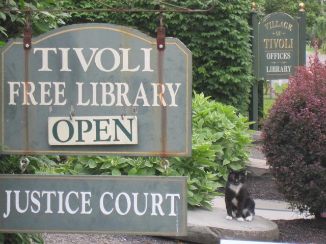 Tivoli library