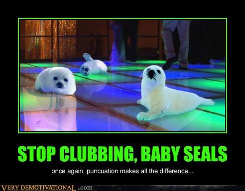 seals clubbing